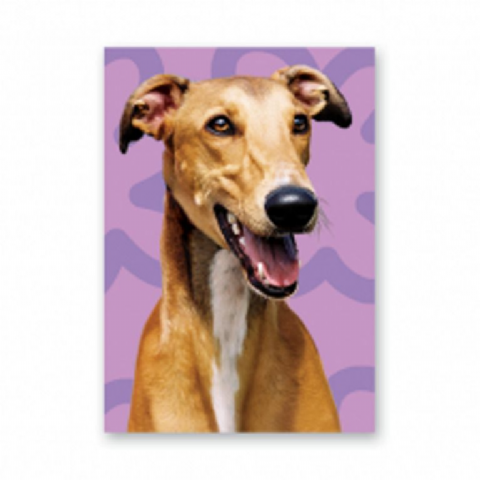 Greyhound Greeting Card with purple background